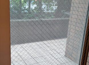 7.18江戸川区 マンションリノベ クリーニング ガラスサッシカビの清掃①